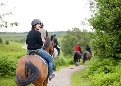 Paardrijden Bath