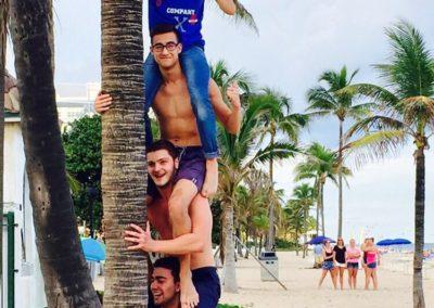 Palmboom fun Fort Lauderdale