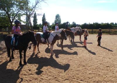 Paardrijden Bristol
